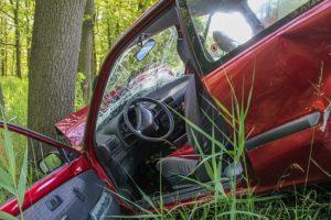 accident crash tree